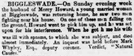 Newspaper article from the Cambridge Independent Press on 24 December 1864